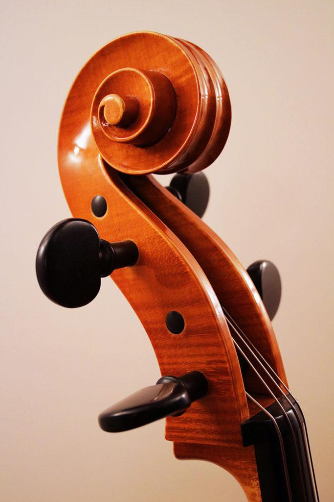 Reiver Instruments - Inlaid cello 3