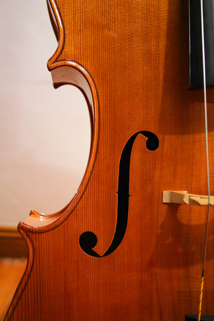 Reiver Instruments - Inlaid cello 6